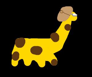 intelligent giraffe