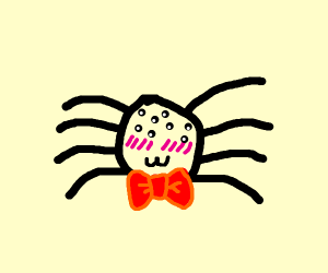 Cutie spider :3