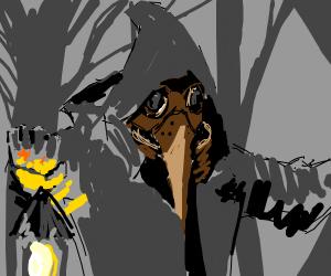 1500's Crow