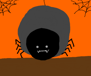 fat spider