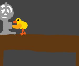 Duck on desk trying to fix fan