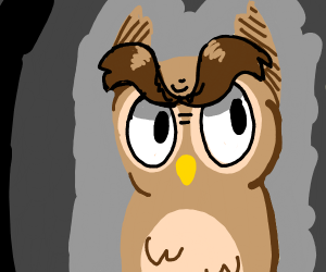 an owl with huge eyebrows