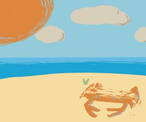 crab loves sand