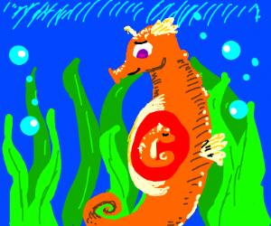 Seahorse mpreg