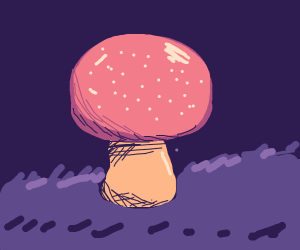 very very very highly detailed mushroom.