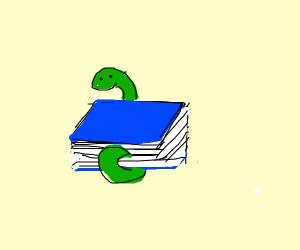 snake homework
