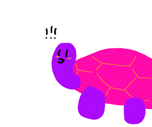 purple turtle is scared