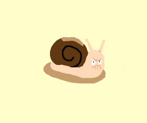 A mad snail