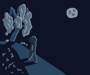 moonlight paradise walk