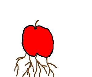 The apple has roots!