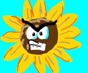 angry sunflower