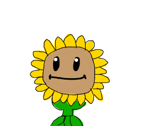 A plant from plants vs zombies