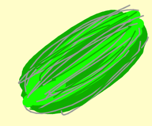 Completely green watermelon