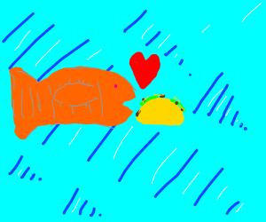 Fish loves tacos