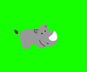 Cute Chubby Rhino