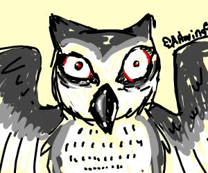 Nightmarish Owl