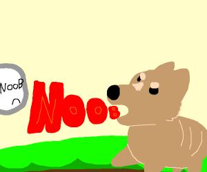 Dog yells at Noob