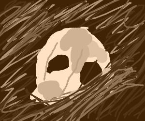 Dirt skull