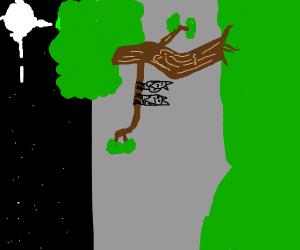 A bat and a bat hanging upside down a tree