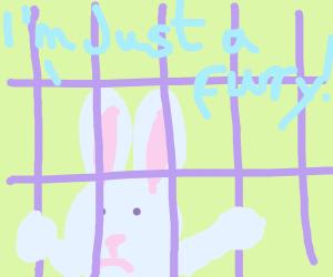 furry in prison