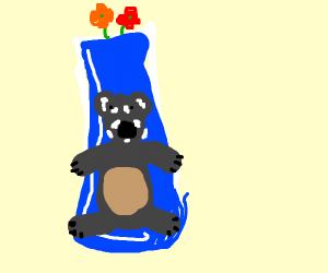Koala holding Vase