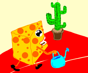 piece of cheese wants to water a cactus