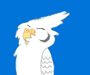 A happy parakeet