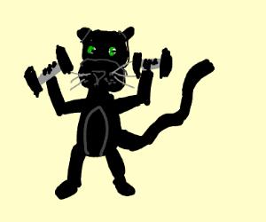 Puma Weightlifting