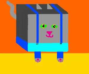 square cat with blue raps