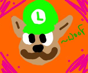 Luigi isa dog