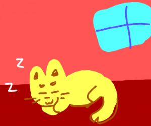 Sleepy li'l cat
