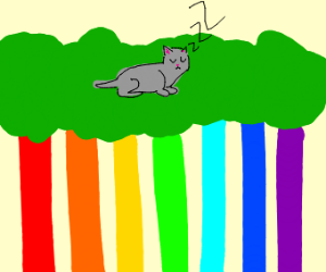 Cat sleeping in a tree in the rainbow forest