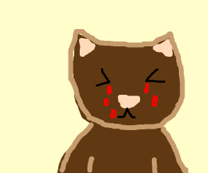 Cat crying red