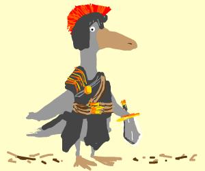 Roman Duck