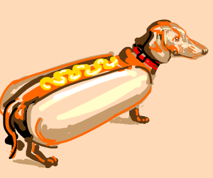 dachshund in a hotdog costume