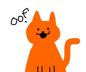 Cat saying oof