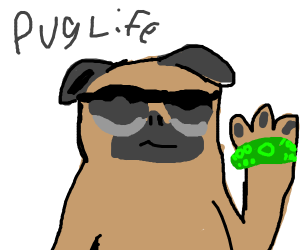 Cool pug thug