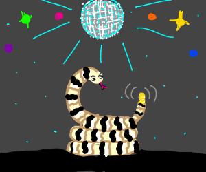 Rattlesnake at a disco!