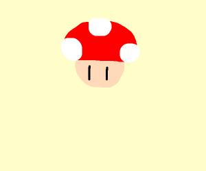 mario's toad bdsm