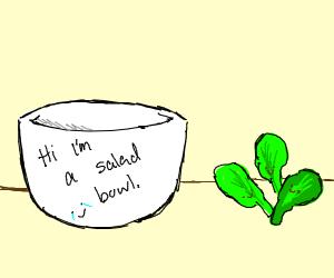 bundle of salad leaves standing by salad bowl