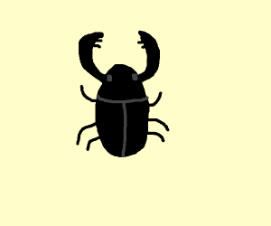 Stag Beatle
