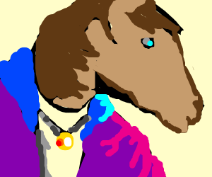 horse in a jacket and tee shirt