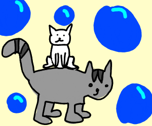 In the land of bubbles, kitten rides on cat