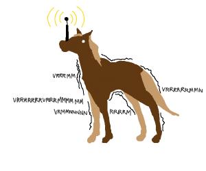 violently vibrating horse
