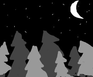 Starry sky, moon and trees in black and white