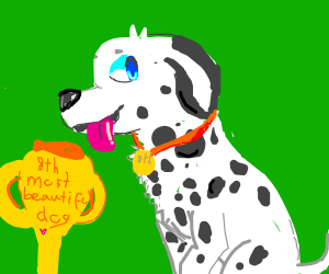 The dalmatian is the 8th most beautiful dog.