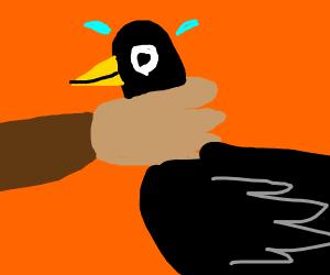 scarecrow strangling/grabbing a bird