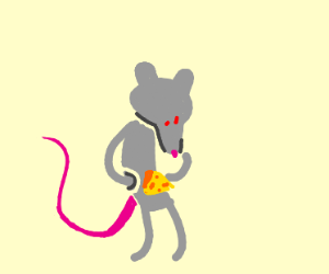 Rat gets cheese