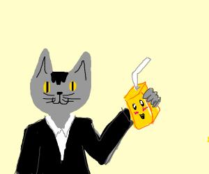 Grey cat/yellow eyes drinking cute juice