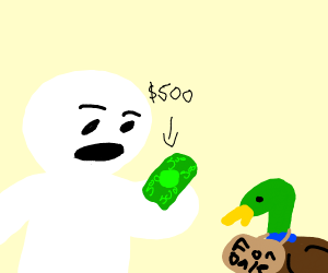 Willing to pay $500 for a duck